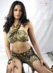 Anushka hot babe seducing pose | Anushka telugu actress exposing | Anushka Sexy | Anushka Unseen Pic